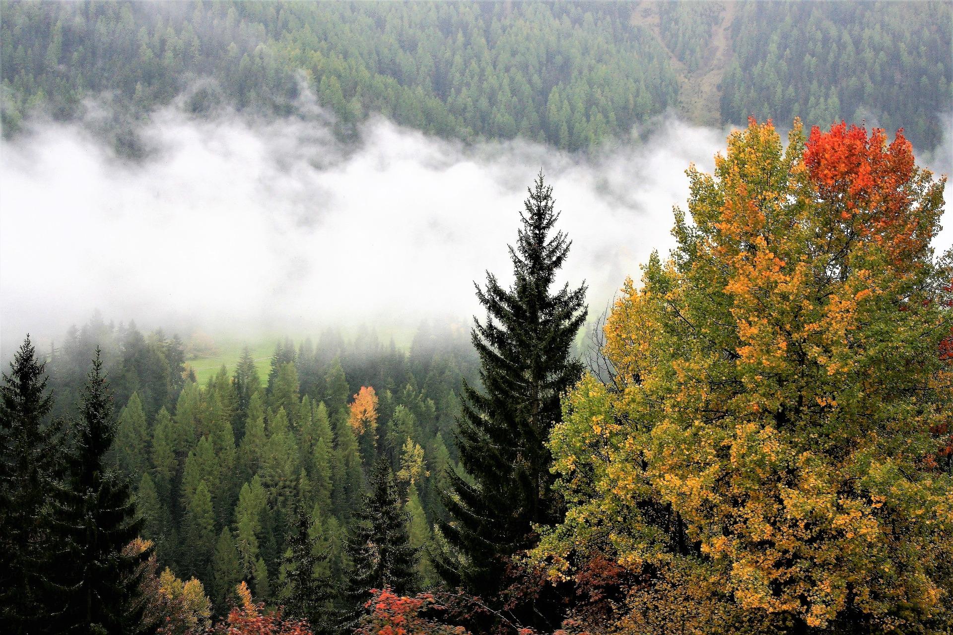 fall-mountains-2822050_1920