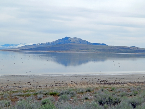 Antelope Island1_14.jpg